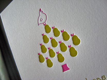 Pear tree closeup