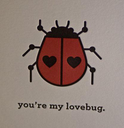 Lovebug Letterpress Greeting Card - Ladybug Closup