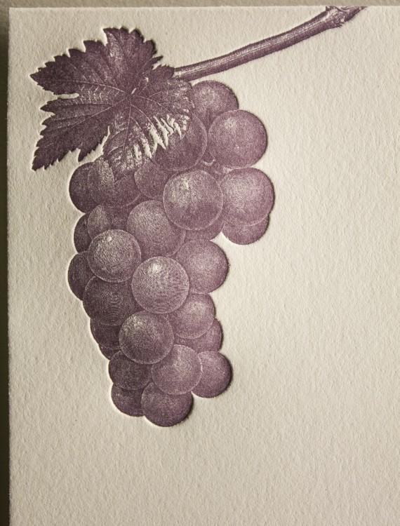 Grape Vine Letterpress Thank You Card - Closeup