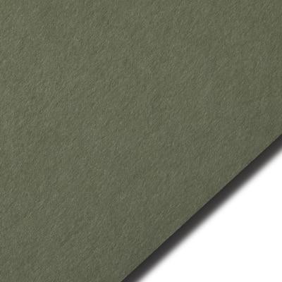 Colorplan Mid Green