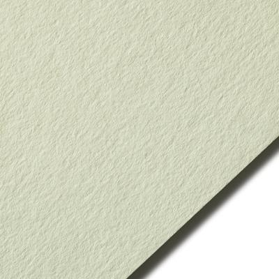 Colorplan Pistachio