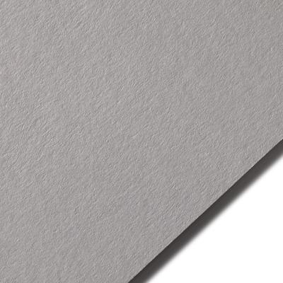 Colorplan Real Grey